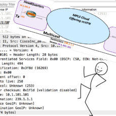 MPLS Fun in the Lab: Add the Multicast at the Customer – Part 4