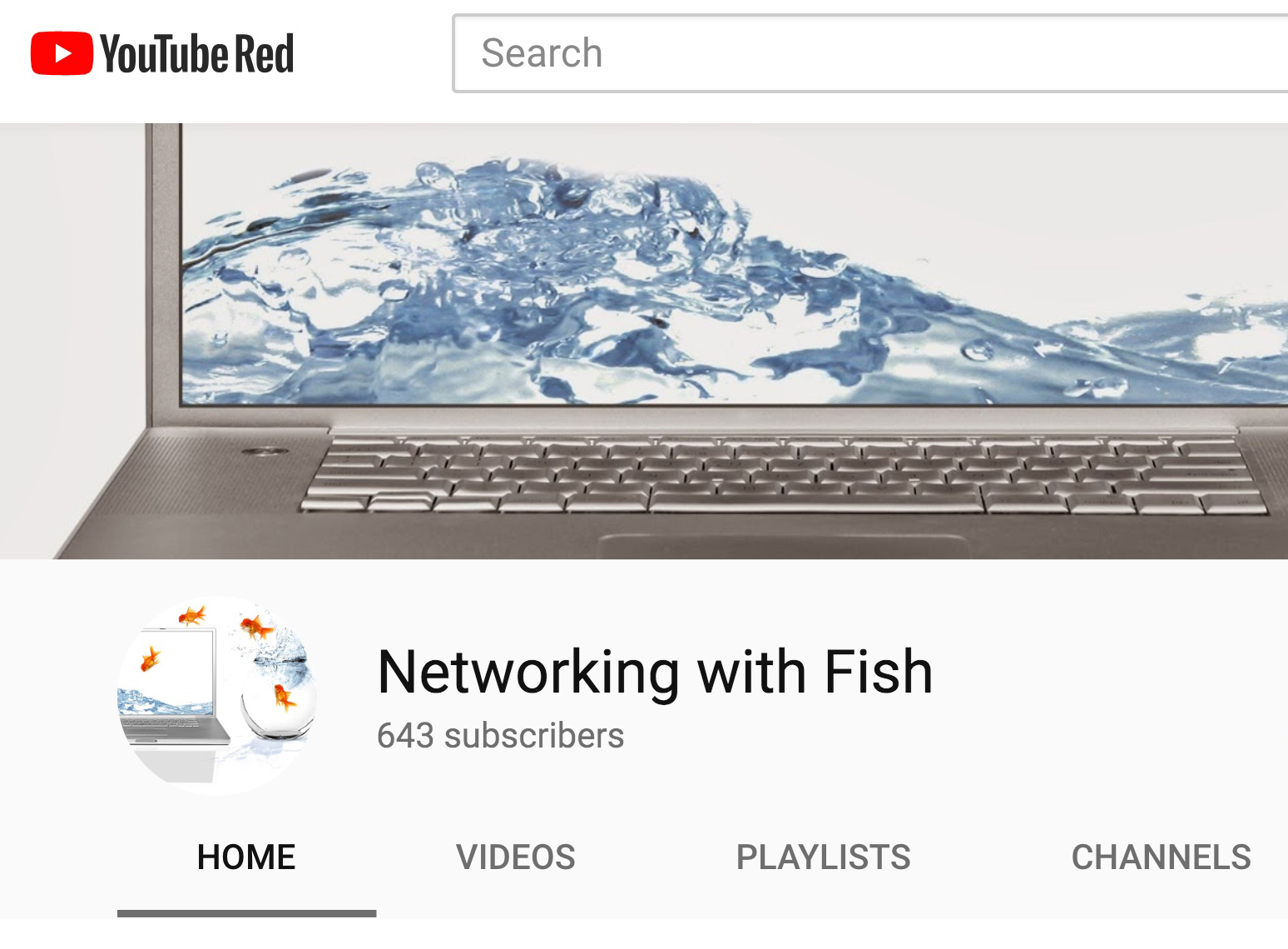 Networking with fish youtube channel for Fishing youtube channels